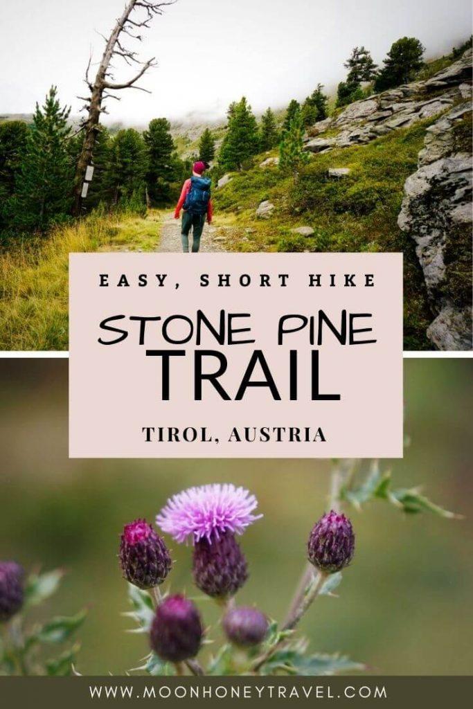 Stone Pine Trail, Easy Kid-friendly Hike near Innsbruck, Austria