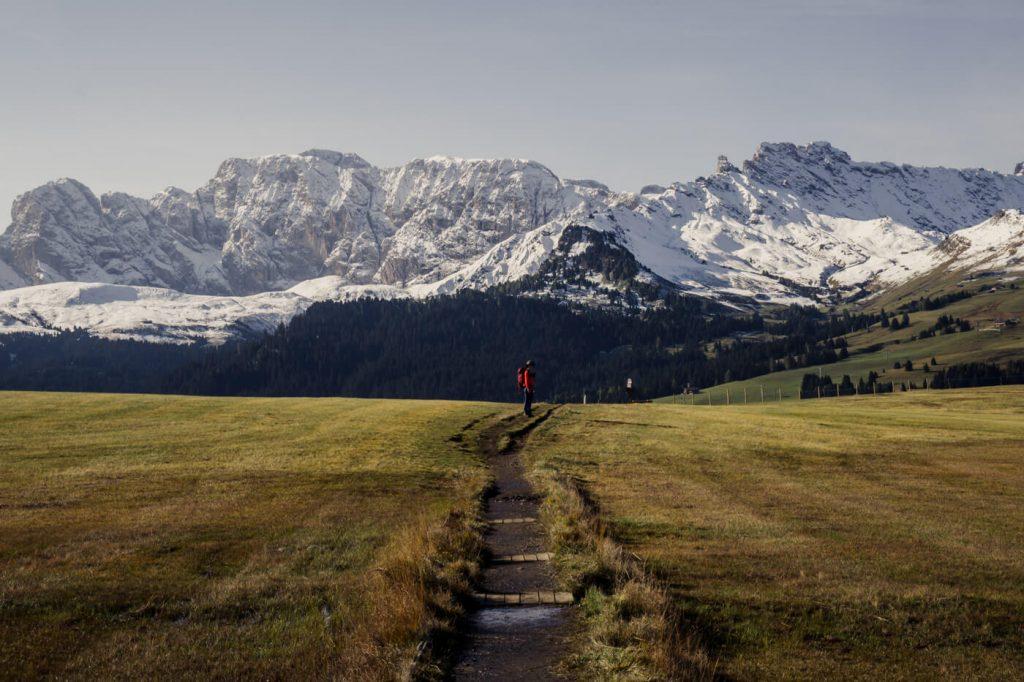 Alpe di Siusi Trail 9 to Saltria