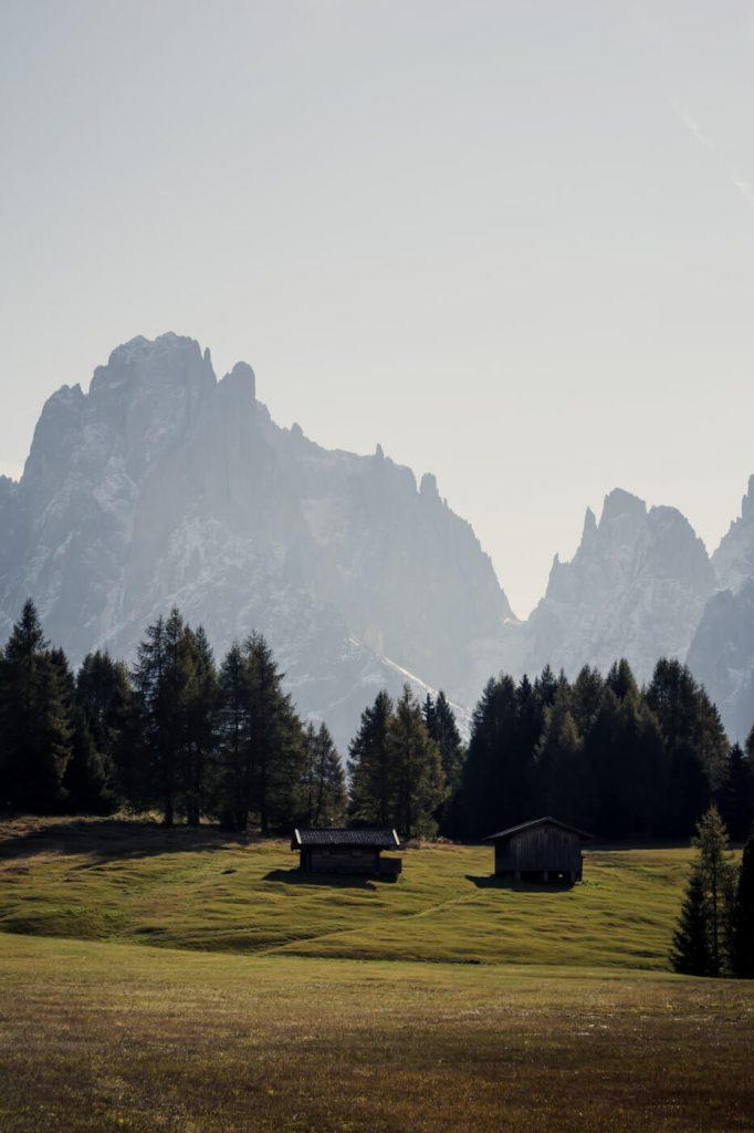 Alpe di Siusi Trail 9, View of Sassolungo