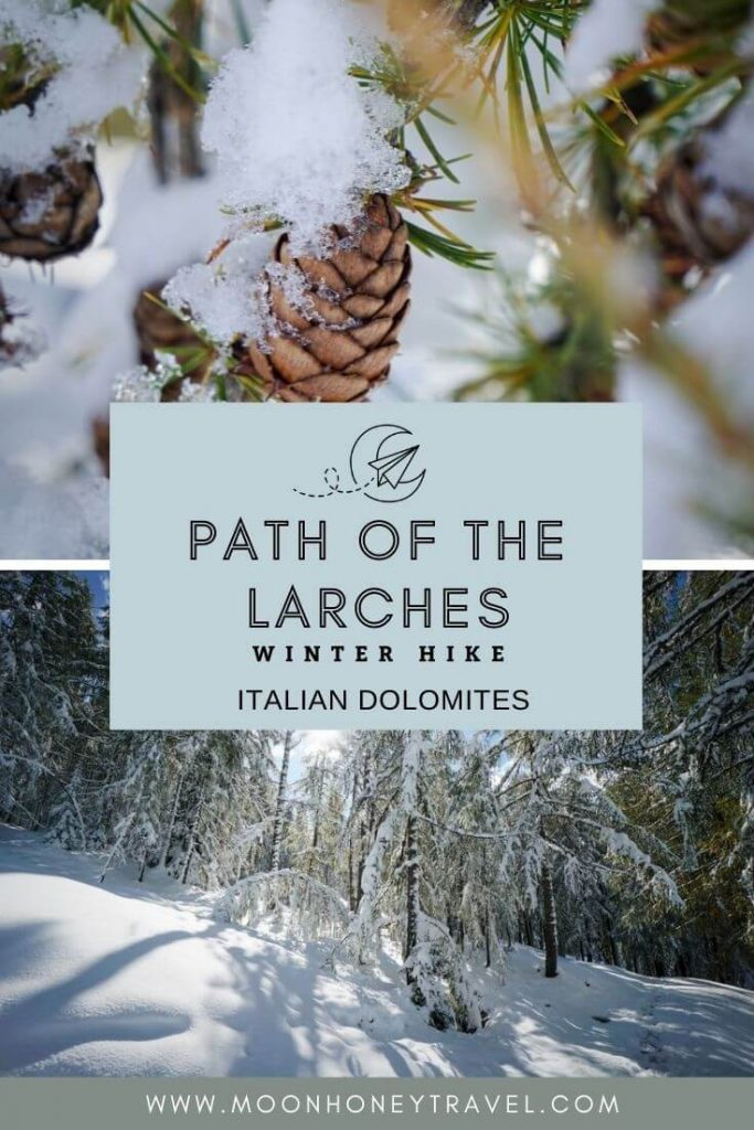 Path of the Larches Winter Hike in San Cassiano, Alta Badia, Italy