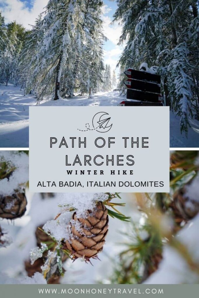 Path of the Larches Winter Hike in Alta Badia, South Tyrol, Italian Dolomites