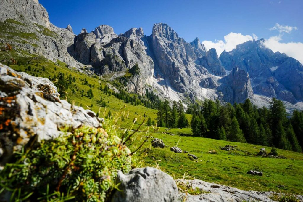 Trail 751, Pale di San Martino