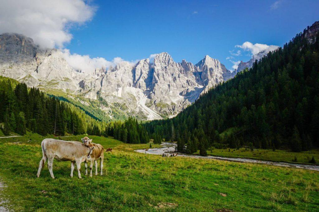 Val Venegia, Pale di San Martino, Italian Dolomites