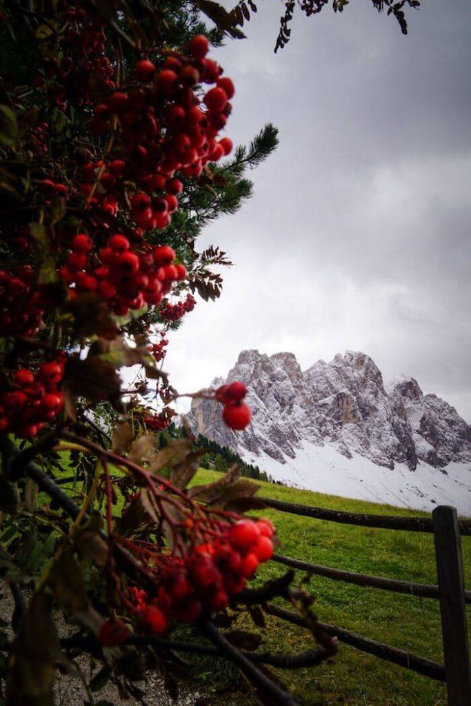 Trail 33, Val di Funes Alpine Pastures