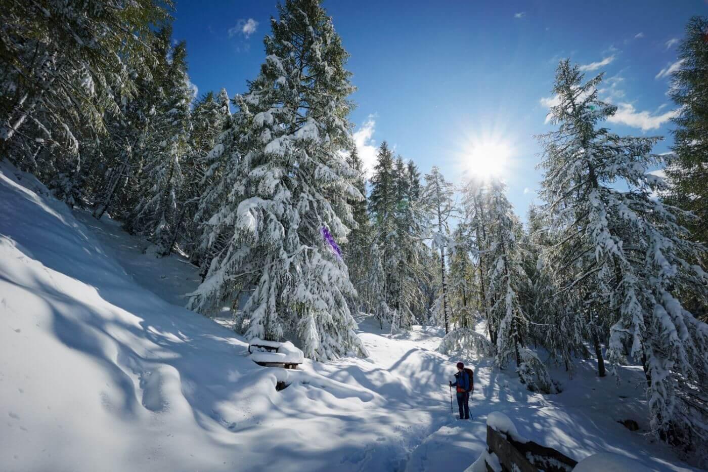 Path of the Larches: Winter Hike in San Cassiano, Alta Badia