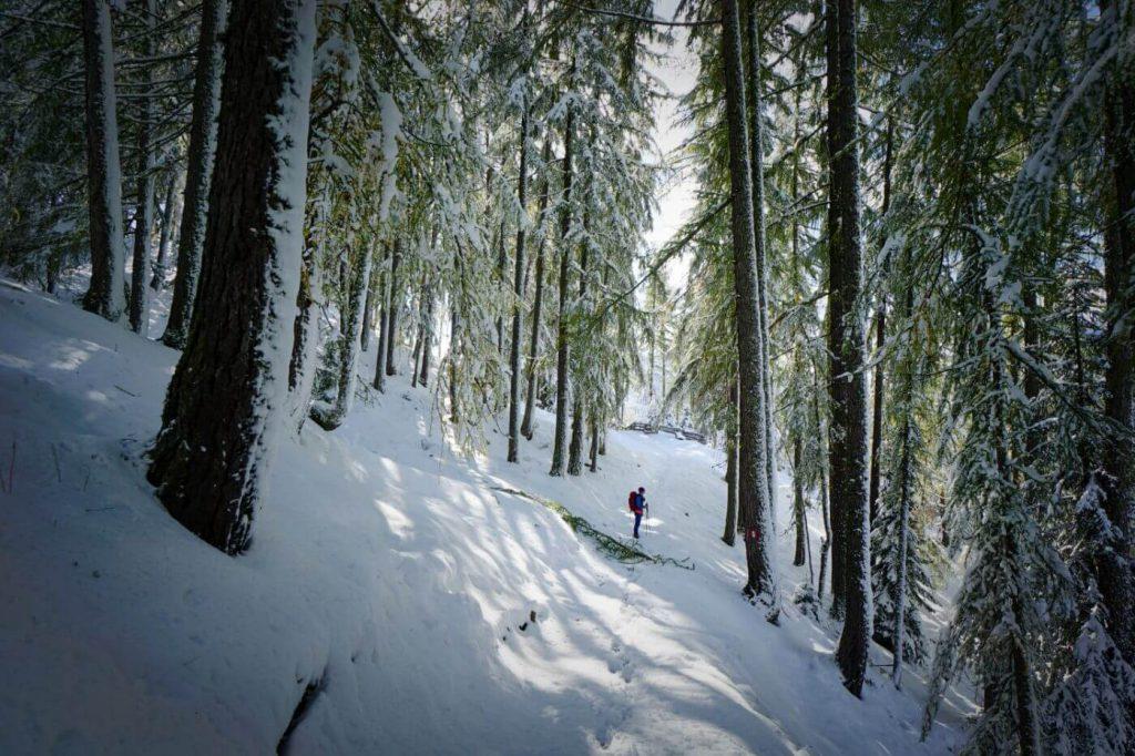 Path of the Larches, Alta Badia