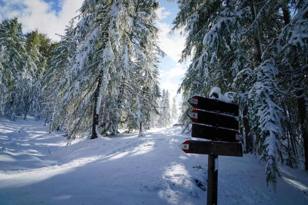Winter Hiking in San Cassiano, Path of the Larches