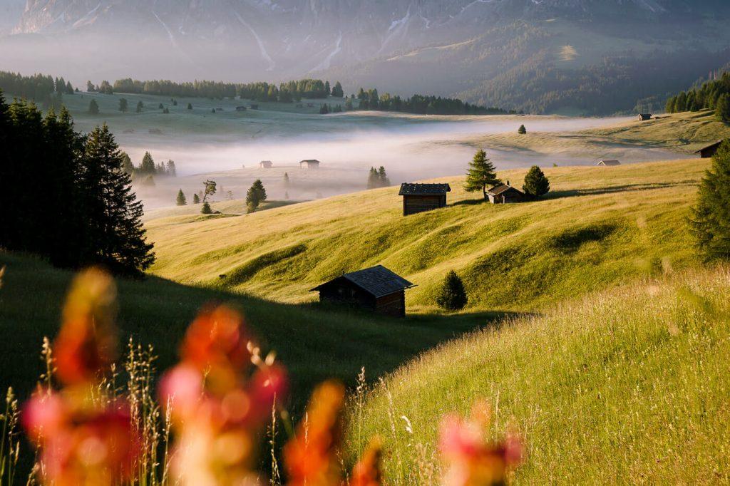 Alpe di Siusi Meadows, Dolomites, Italy