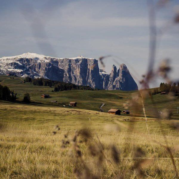 Sciliar, Alpe di Siusi, Italy