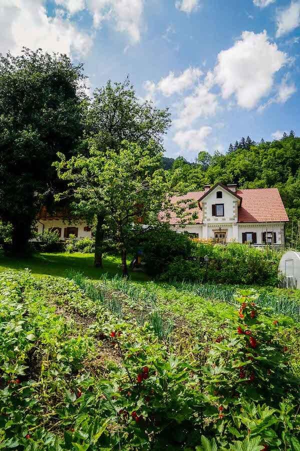 Tourist Farm Stoglej, Slovenia Accommodation