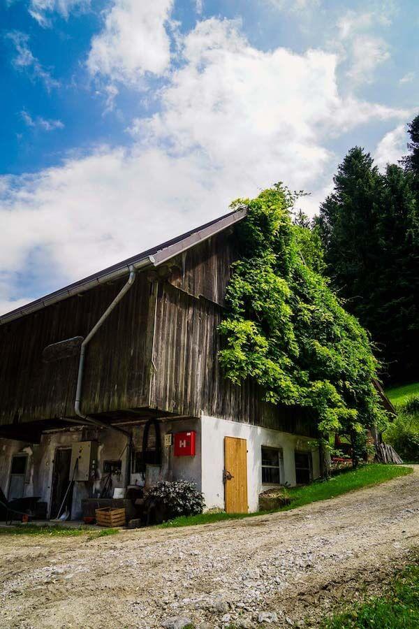 Tourist Farm Stoglej