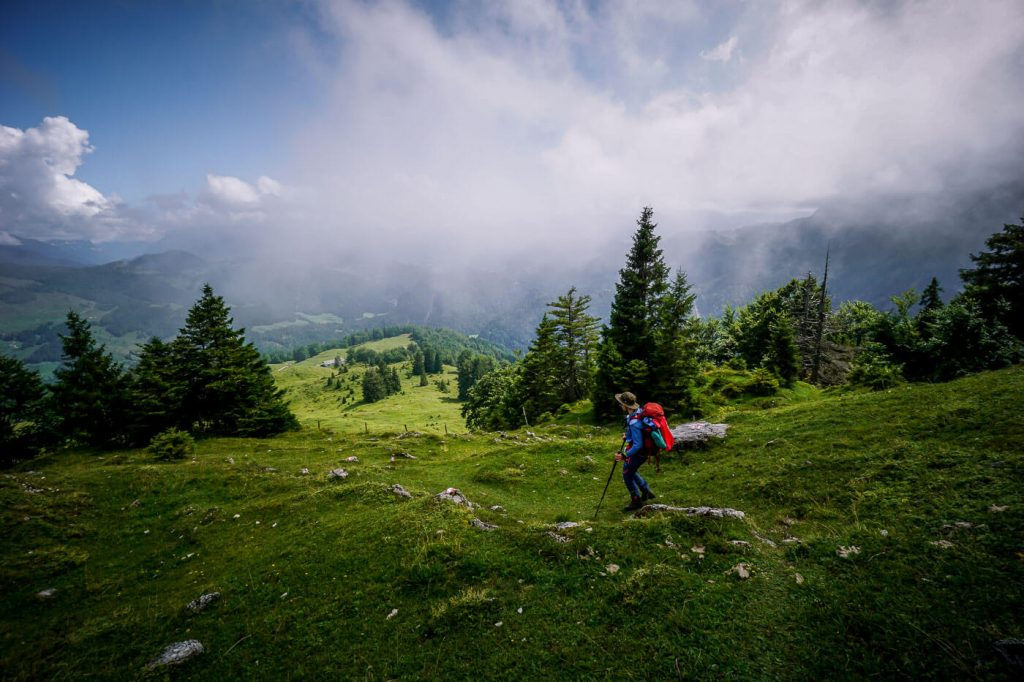 Alpine Pastures, Kaiser Mountains, Austria