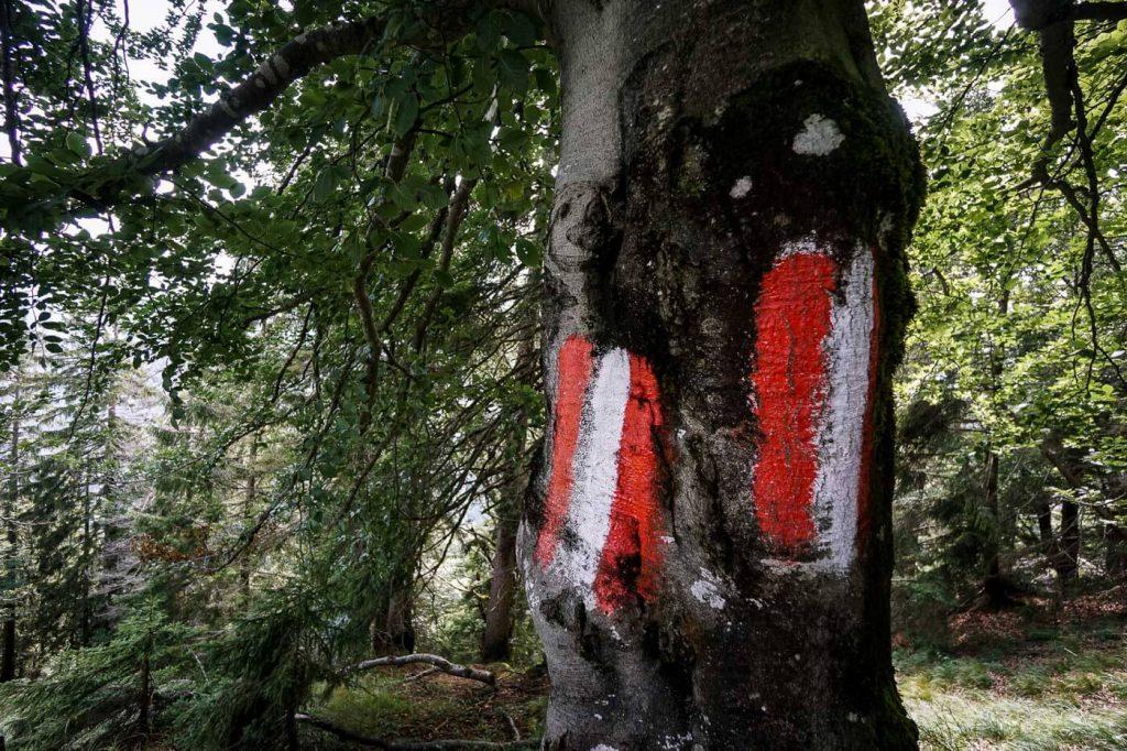 Hiking Trail Marker, Austria